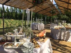 IMG_7004  Matrimonio di Chiara e Andrea IMG 7004 1